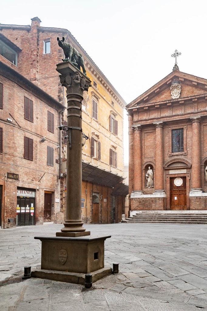 Piazza Tolomei, Lupa Bigemina Senese e chiesa di San Cristoforo Duccio Fiorini